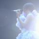宇多田ヒカル活動休止直前ライブ・WILD LIFEの映像